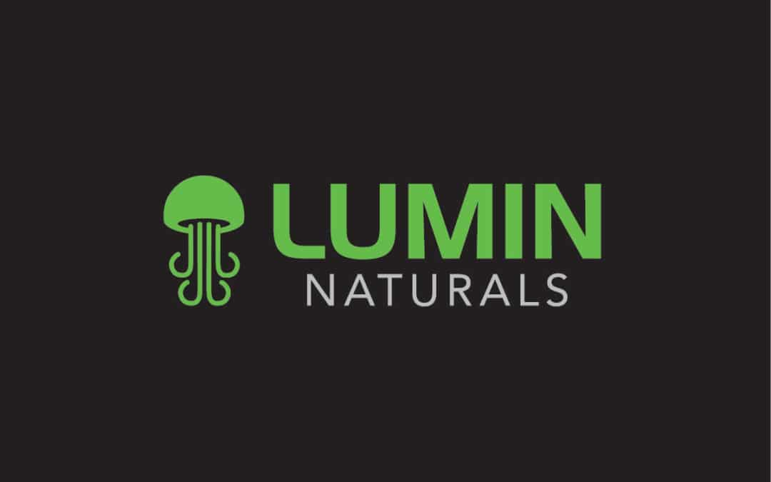 Lumin Naturals Logo Design